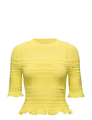 SS COMPACT POINTELLE LACE RAGLAN TEE - CANARY