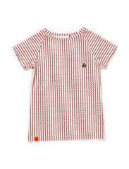 Eddy T-shirt - Brown/Orange Striped