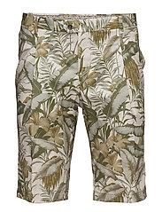 Shorts - 650 DUSTY OLIVE
