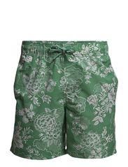 Swimwear - Green Spruce