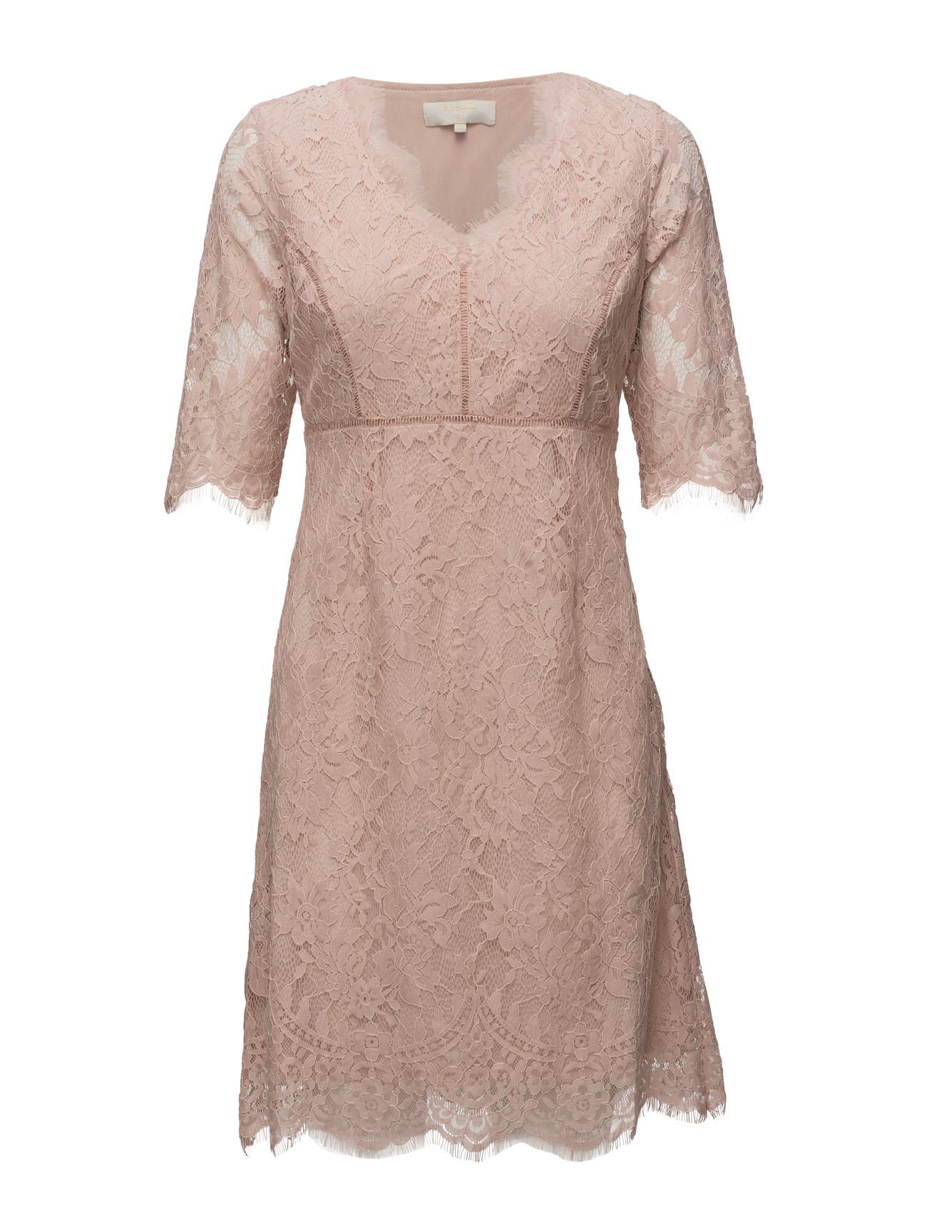 Adriana Lace Dress Cream Korte kjoler til Damer i Rose Dust