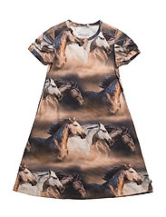 Horse photo dress - INK