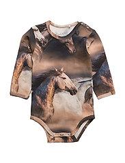 Horse photo body - INK