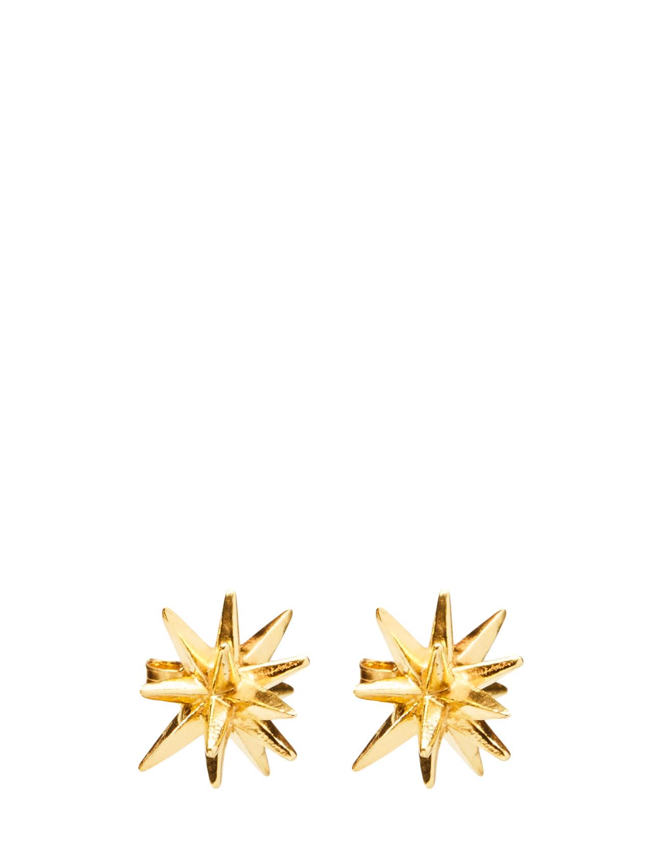 Half Star Gaia Jewels Accessories til Kvinder i Guld