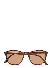 Plastic Frame Sunglasses - DARK HAVANA