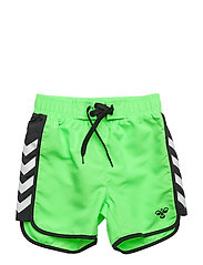 DUKE SWIMPANTS - GREEN GECKO
