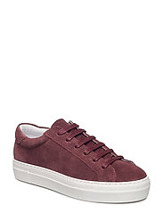 Low Lace Suede - BURGUNDY