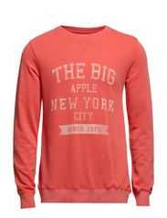 FALL CREW NECK SWEAT BBB - Spiced Coral