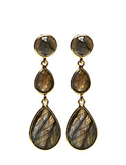 Elegant Drops Earrings - LABRADORITE