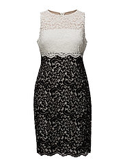 Two-Tone Lace Dress - BLACK/LAUREN WHIT