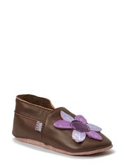 Leathershoe, Star Flower - Medium brown