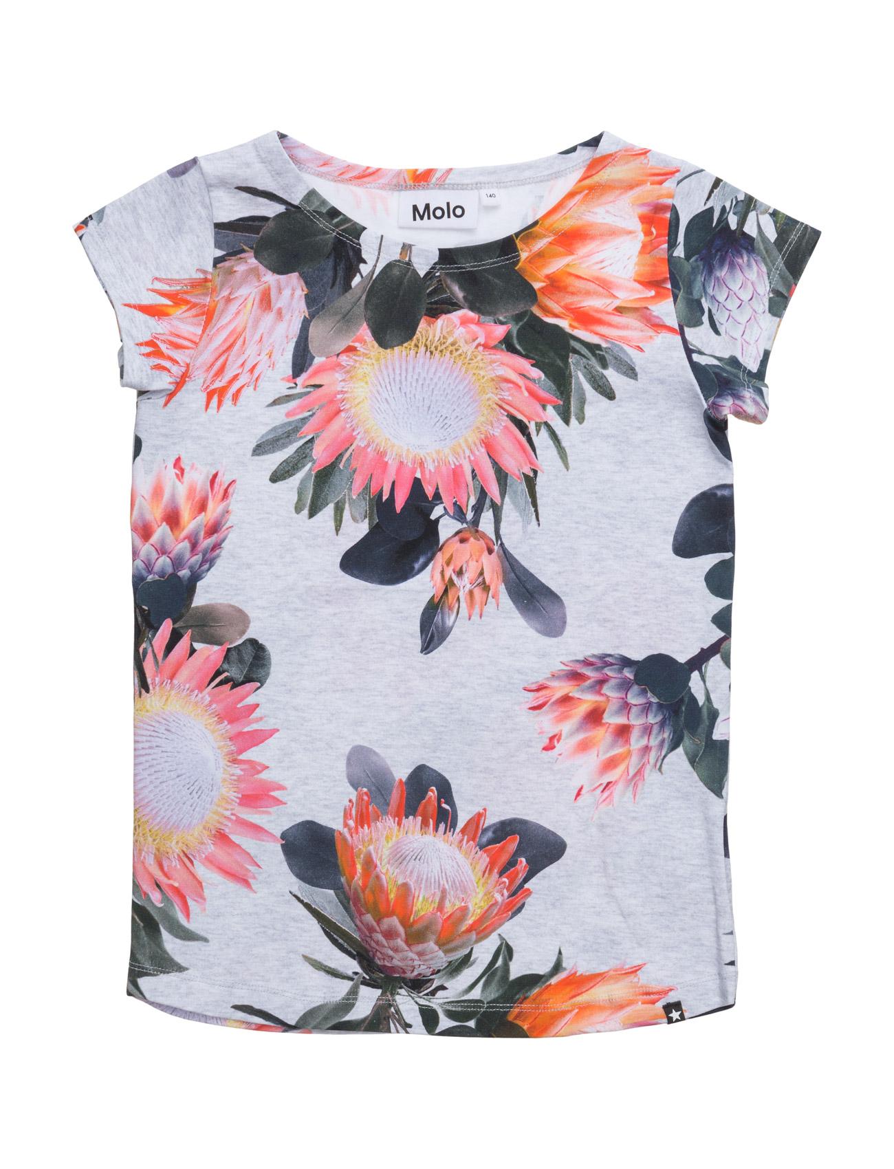 Robinette Molo T-shirts til Piger i