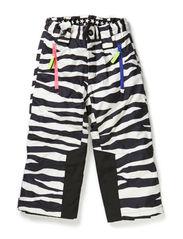 Jump - Zebra