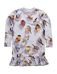 Caras - BOUNCING BIRDS