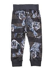 Sammy - BLUE TIGERS