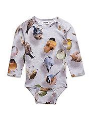 Fonda - BOUNCING BIRDS