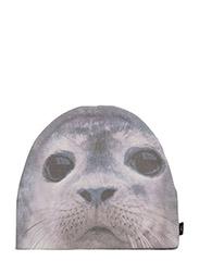 Kay - CUTE SEAL