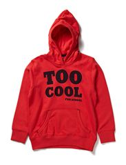 name it LUK KIDS SWEAT W HOOD 412