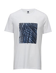 Barry Tee 3292 - LIGHT NAVY