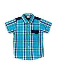 Checkered Shirt Shark - BLUE