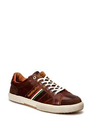 MODENA PICENO LOW MEN - Tortoise Shell