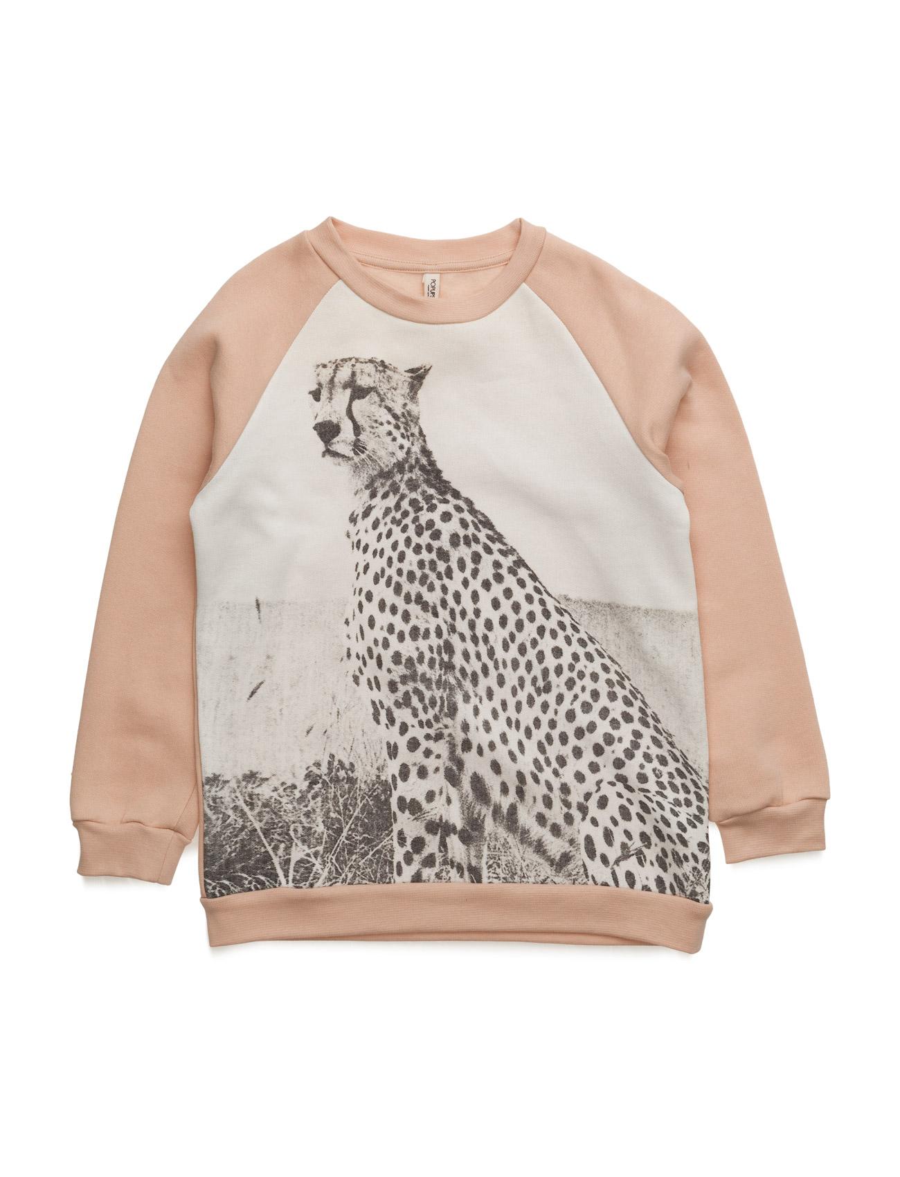 Basic Sweat Cheetah Popupshop  til Børn i