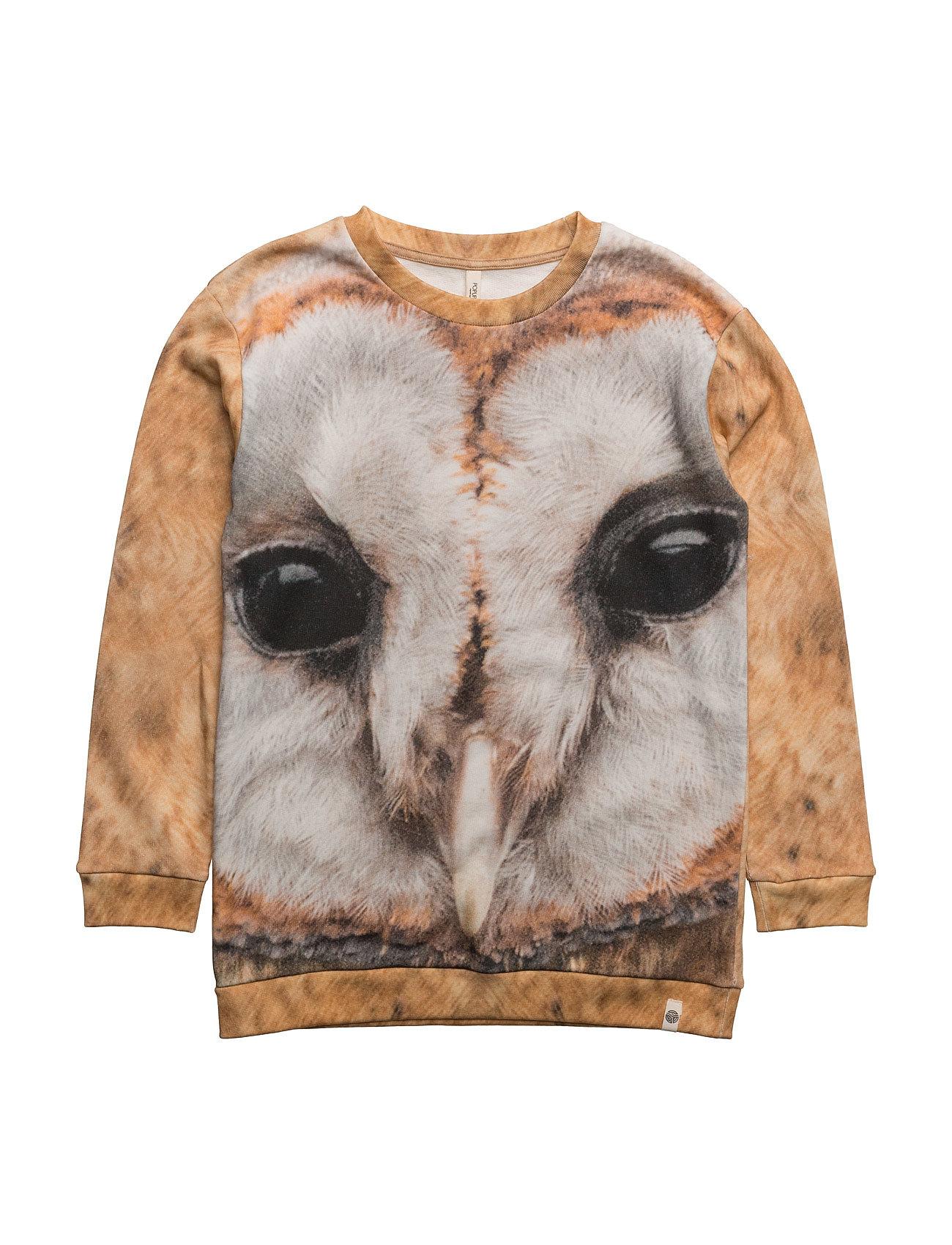 Loose Sweat Owl Aop Popupshop  til Børn i