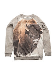 Basic Sweat Bison - BISON