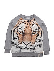 Basic Sweat - TIGER
