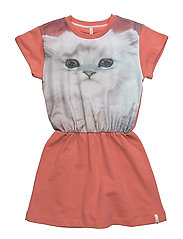 Robbie dress - FLUFFY CAT