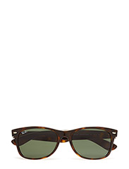NEW WAYFARER - TORTOISE-CRYSTAL GREEN