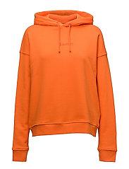 Jaya hoodie 9461 - PUFFINS BILL