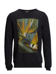 Crewneck sweat with big chest artwork. - 95 antra