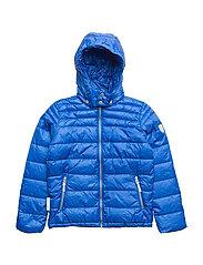 jacket Lightweight Padding Chris with detachable hood - PRINCESS BLUE