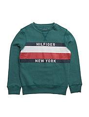 AME HILFIGER CN HWK L/S - GREEN