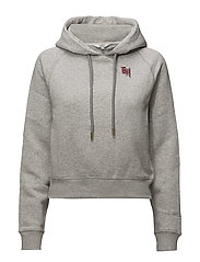 GIGI HADID GRAPHIC CROPPED HOODIE - GREY