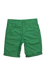 BERMUDA - GREEN
