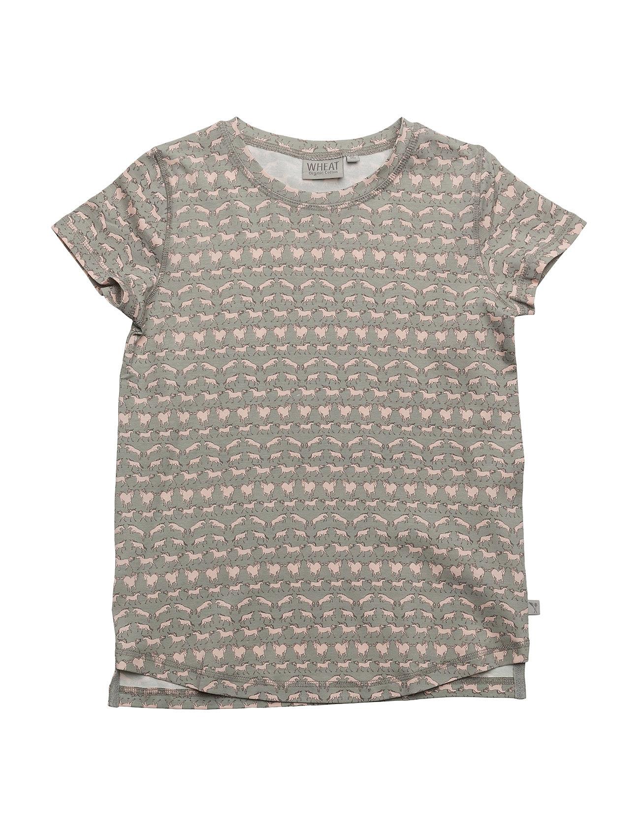 T-Shirt Nicola Ss Wheat Kortærmede t-shirts til Børn i Lysegrå