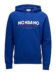 Raffi hoodie - BLUE